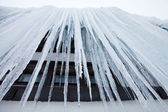 View from the bottom of the huge icicles — Stock Photo