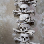 Human skull and crossbones — Stock Photo