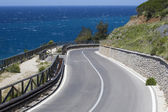 海岸のエルバ島の道 — ストック写真