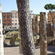 Largo di Torre Argentina is a square in Rome — Stock Photo