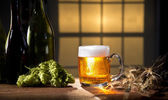 Great beer and hops still life — Stock Photo
