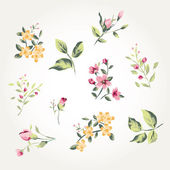 A collection of leaves with flowers for the design. Vector illustration pattern — Stock Vector