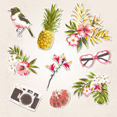 Vintage things set-birds,tropical flowers,shell,sungl asses,camera on grunge background — Stock Vector