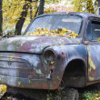 Stock Photo: Abandoned car of the yellow, autumn rain forest