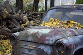 Abandoned car of the yellow, autumn rain forest — Foto Stock