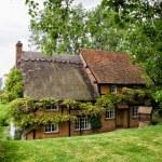 English Village Cottage — Stock Photo #23764649