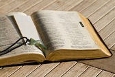 The Holy Bible open up in the centre — Stock Photo
