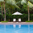 Stock Photo: Tropical resort swimming pool