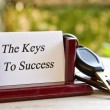 Keys to success — Stock Photo #27062703