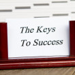 Keys to success — Stock Photo #27062715
