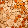 log background — Stock Photo