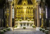 オーストリア wien は、大聖堂の内部 — ストック写真