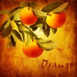 Royalty-Free Stock Photo: Orange fruit on the vintage background