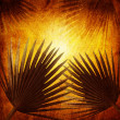 Palm leaves at sunset background illustration — Stock Photo