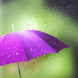 Umbrella in the rain - Stock Photo