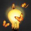 Glowing lamp with butterfly — Stock Photo #25125261