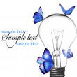 Light bulb with blue butterfly. - Stock Photo