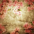 Foto Stock: Old paper. Spring flower background.