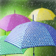 Colorful umbrellas in the rain. — Stock Photo