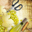 Wine making concept — Stock Photo