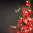Gladiolus flower on black background — Stock Photo #26194001