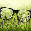 Reading eyeglasses and beautiful nature view. Sight care concept — Stock Photo