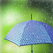Colorful umbrellas in the rain. — Stock Photo