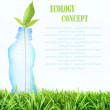 Plastic bottle and Sprout. — Stock Photo