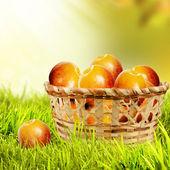 Pommes dans un panier plein air. — Photo