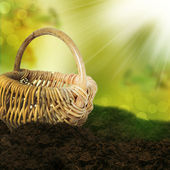 Empty basket on the field. — Stock Photo