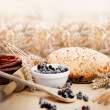 Freshly baked pie with berries on the wheat background.  — Stock Photo
