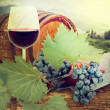 Stock Photo: Wine barrel and grapevine with vineyard in background