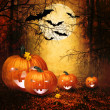 Halloween design - Forest pumpkins — Stock Photo #33742765