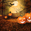 Halloween design - Forest pumpkins — Stock Photo