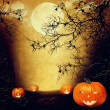 Halloween design - Forest pumpkins — Stock Photo #33743231
