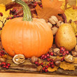 Autumn concept with seasonal fruits and vegetables  — Foto Stock