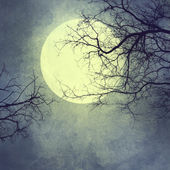 Halloween background with moon. — Stock Photo