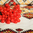 Viburnum berries on the embroidered towel  — Stock Photo