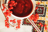 Viburnum berries on the embroidered towel — Stockfoto