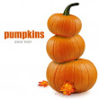 Pumpkins with fall leaves over white.  — Stock Photo