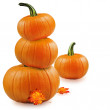 Pumpkins with fall leaves over white. — Stock Photo #35547529