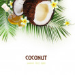 Spa concept with coconut on white. — Stock Photo