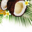 Stock Photo: Spa concept with coconut on white.