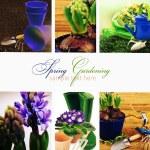 Springtime gardening collage. — Stock Photo