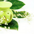 Stock Photo: Fragrance oil warmer