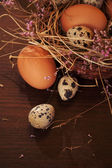 Easter eggs. — Foto Stock