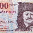 money of Hungary 500 forint macro — Stock Photo