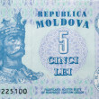 Money of Moldova macro — Stock Photo