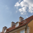 Riga roof — Stock Photo