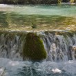 Small waterfall — Stockfoto